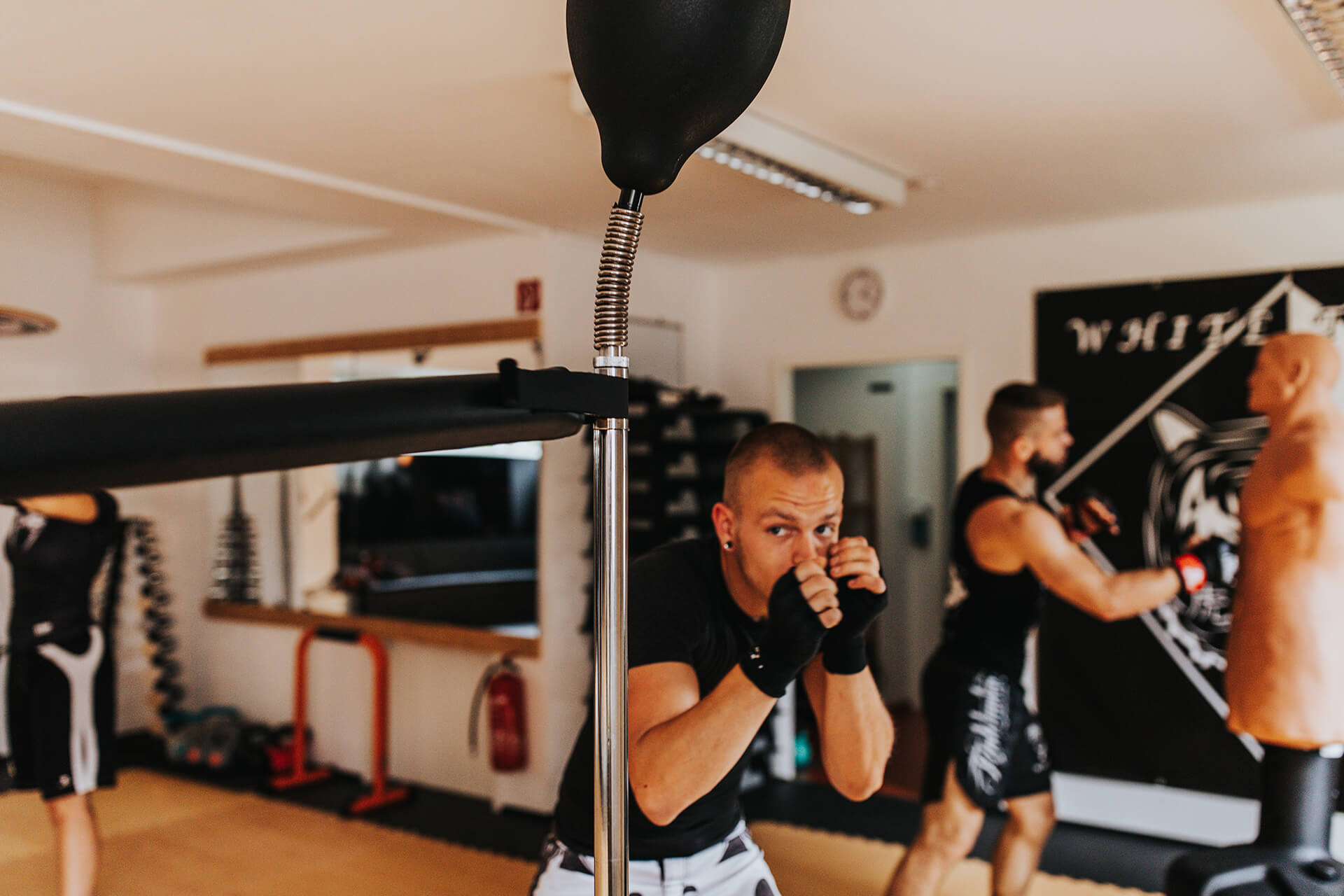 White Tiger Revolution Kurse Fitness-Boxing